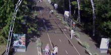 Webcam Moscow - Central alley in the park Sokolniki
