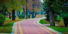 Webcam Nalchik - Alley in Taukina garden