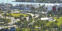 Webcam Clearwater - Promenade, palm trees, beaches
