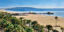 Webcam San Diego - Beautiful beach with palm trees