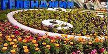 Webcam Gelendzhik - Clocks made of flowers