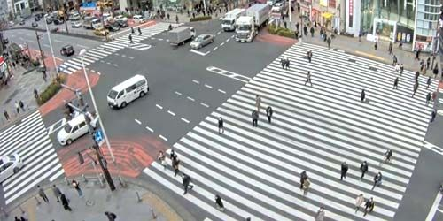 Webcam Tokyo - Crosswalk at an intersection in the Shinjuku area