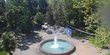 Webcam Sochi - Fountain in the Riviera Park