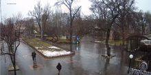 Webcam Odessa - City garden