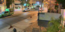 Webcam Key West - Guest house on Duval street