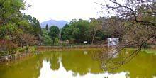Webcam Taoyuan - Lake in Jiaobanshan Park