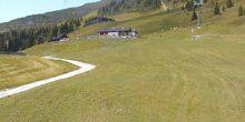 Webcam Salzburg - Alpine meadow