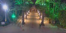Webcam Izmir - Palm Alley in the park