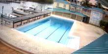 Webcam Nassau - Dolphinarium pool UNEXSO