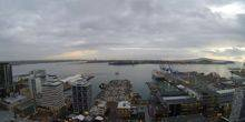 Webcam Auckland - Sea port