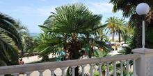 Webcam Gagra - Beach, palm trees, beaches