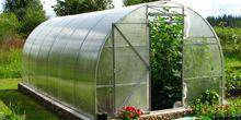 Webcam Khabarovsk - The greenhouse is in a private house