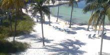 Webcam Key West - Beach with pool at Tranquility Bay Resort