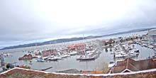 Webcam Holmestrann - Marina with yachts