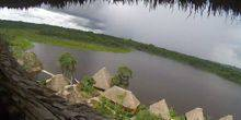 Webcam Francisco de Orellana - Park Yasuni